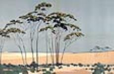 MIKAN 2834265 Australian Wheat,. 1926-1934 [Australian Wheat,., 1926-1934]