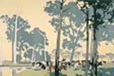 MIKAN 2897660 Industrie laitière en Australie. 1926-1934. [Industrie laitière en Australie., 1926-1934.]