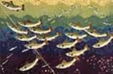 MIKAN 2834284 [untitled] :  a shoal of fish. 1926-1934 [84 KB, 640 X 420]
