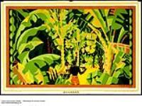 MIKAN 2845247 Bananas. 1926-1934. [Bananas., 1926-1934.]