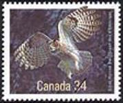 MIKAN 2266023 Great Horned Owl = Grand-duc d'Amérique [philatelic record]. [106 KB, 640 X 535]