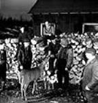 "MIKAN 3197106 Construction workmen of the Steep Rock open-face mine site feeding a cigarette to ""Bambi"", a tame deer. Jan. 1944 [69 KB, 463 X 480]"