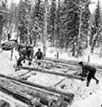 MIKAN 3627890 Des bûcherons chargent des traîneaux de billes pour les transporter aux «parcs à grumes » sur la surface gelée des rivières. mars 1943 [84 KB, 458 X 480]