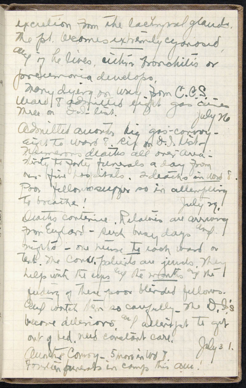 Diary - 1917, Volume Number: , Page Number: 76