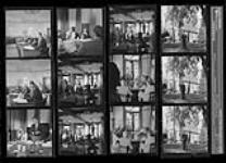 MIKAN 3825779 Stratford Festival. 1953. [188 KB, 1000 X 720]