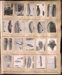 MIKAN 3819798 Page d'un album d'épreuves du studio Topley, négatifs originaux 125130-125149.  . mars, 1913. [Page d'un album d'épreuves du studio Topley, négatifs originaux 125130-125149. ., mars, 1913.]