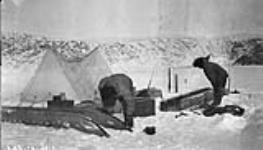 MIKAN 3855047 Icing the komitieks in the morning before starting out - Kingnuit Fiord.  Baffin Island. 1927. [75 KB, 600 X 342]
