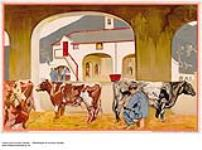 MIKAN 2845225 [untitled] :  dairy farming in the Empire. 1926-1934 [[untitled] :, 1926-1934]