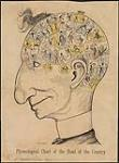 MIKAN 3636109 Phrenological Chart of the Head of the Country [Sir John A. Macdonald] 1887. [356 KB, 1000 X 1354]