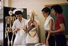 MIKAN 4323851 Two Aboriginal nursing students [Dorothy Visser (nee Whiskeyjack) and Barbara Bigplume from Saddle Lake, AB] and a nurse examining a medical mannequin, Calgary, Alberta  1954-1962. [146 KB, 1000 X 676]