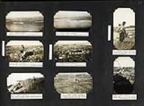 MIKAN 4930306 [The Hudson's Bay Company Fox farm and the topography including flora and fauna at Chesterfield Inlet , Nunuvut]. 1930 [[The Hudson's Bay Company Fox farm and the topography including flora and fauna at Chesterfield Inlet , Nunuvut]., 1930]