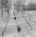 MIKAN 4952408 Ski. 1960 [Ski., 1960]