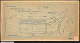 MIKAN 2148168 Plan of subdivision of part of,  agency or Pither's Point, Indian ReserveNo. 1, Rainy Lake, district of Rainy River, also showing leased land to the town of Fort Frances. / 24 November 1916 [Plan of subdivision of part of, agency or Pither's Point, Indian ReserveNo. 1, Rainy Lake, district of Rainy River, also showing leased land to the town of Fort Frances. /, 24 November 1916]
