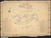 MIKAN 2148299 Plan of islands 46 to 123 opposite Burleigh Township, and islands 38 to 126 opposite Dummer Township in Stony Lake, Ontario / 1886. [Plan of islands 46 to 123 opposite Burleigh Township, and islands 38 to 126 opposite Dummer Township in Stony Lake, Ontario /, 1886.]