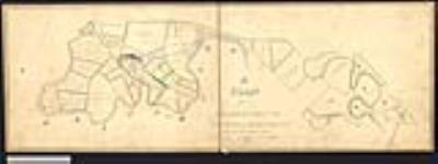 MIKAN 2148349 Plan of the Eagle's Nest and the adjacent lands in the township of Brantford , also plan of lots #'s 8 and 9 in the Eagle's Nest Tract in the township ofBrantford showing the land of M.D. Baldwin composed of the southeast part of #8and west part of #9. / 1862. [Plan of the Eagle's Nest and the adjacent lands in the township of Brantford , also plan of lots #'s 8 and 9 in the Eagle's Nest Tract in the township ofBrantford showing the land of M.D. Baldwin composed of the southeast part of #8and west part of #9. /, 1862.]