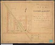MIKAN 2148392 Plan of the town of Azoff, now Canfield, in the township of North Cayuga,county of Haldimand. / 1855. [Plan of the town of Azoff, now Canfield, in the township of North Cayuga,county of Haldimand. /, 1855.]