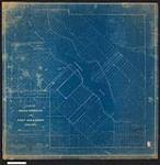 MIKAN 2148545 Plan of Indian Reserve at Fort Alexander, Manitoba. / 1904. [Plan of Indian Reserve at Fort Alexander, Manitoba. /, 1904.]
