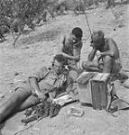 MIKAN 5176181 With funny paper, a lunch of grapes and the BBC to listen to men of patrol have a bit of relaxation; L to R: front, Pte. Bob Armstrong, Pte. Francis Nowlan and Pte. Cecil Wood. July 10, 1943. [With funny paper, a lunch of grapes and the BBC to listen to men of patrol have a bit of relaxation; L to R: front, Pte. Bob Armstrong, Pte. Francis Nowlan and Pte. Cecil Wood., July 10, 1943.]