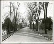 MIKAN 5066151 Federal District Improvement Commission Records. North bank Driveway looking west toward Bronson Avenue. November 5, 1929 [Federal District Improvement Commission Records. North bank Driveway looking west toward Bronson Avenue., November 5, 1929]