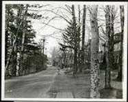 MIKAN 5066164 Federal District Improvement Commission Records. View along south east bank of Echo Drive from Ottawa Motor Boat Club looking east. November 7, 1929 [Federal District Improvement Commission Records. View along south east bank of Echo Drive from Ottawa Motor Boat Club looking east., November 7, 1929]