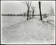 MIKAN 5066170 Federal District Improvement Commission Records. Area looking south along west bank of Rideau River from east end of Mann Ave. January 29, 1930 [Federal District Improvement Commission Records. Area looking south along west bank of Rideau River from east end of Mann Ave., January 29, 1930]