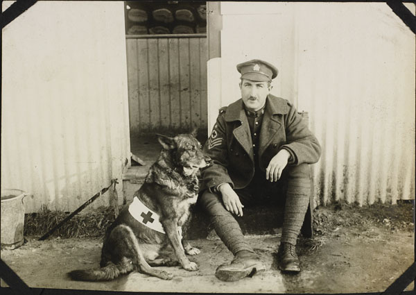 Photograph of an unidentified sergeant with a dog wearing a Red Cross badge, No. 2 Canadian General Hospital, Le Tréport, France, 1917